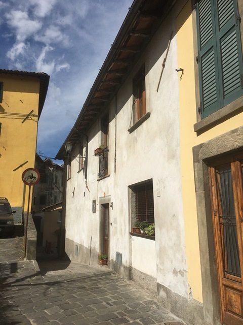 foto Due appartamenti con giardino con viste panoramiche nel centro storico di Barga, Lucca.