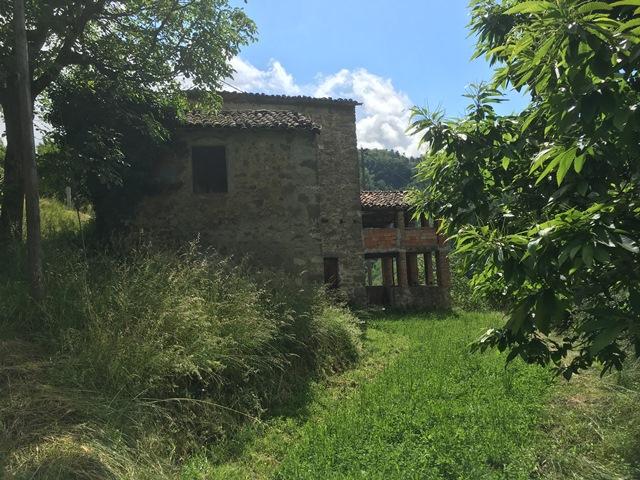foto Tre tipiche capanne in pietra con 6000mq di terreno agricolo e oliveti, a soli 3 km dal paese di Barga, Lucca