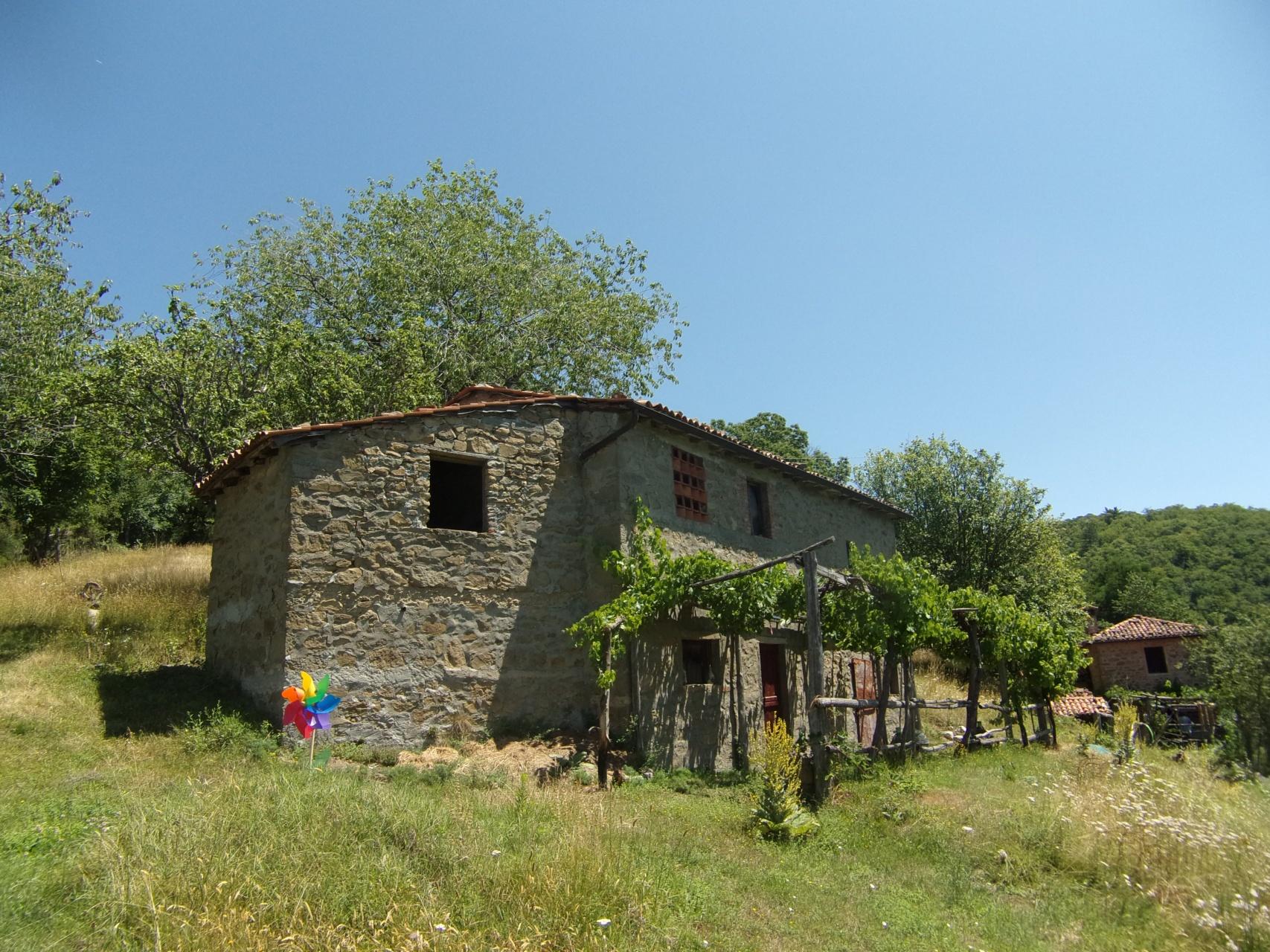 foto Coppia di edifici rurali poste in 9 ettari di terreno in tenuta recintata, Barga, Lucca, Toscana.