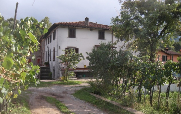 Tuscan semi-rural house, could become a guesthouse.